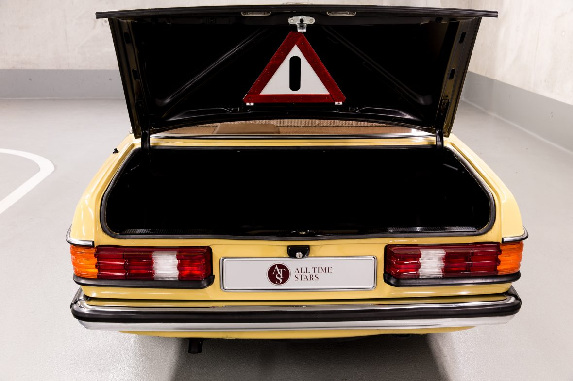 Mercedes-Benz 230 Limousine W123 10